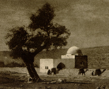 Alma in Jerusalem